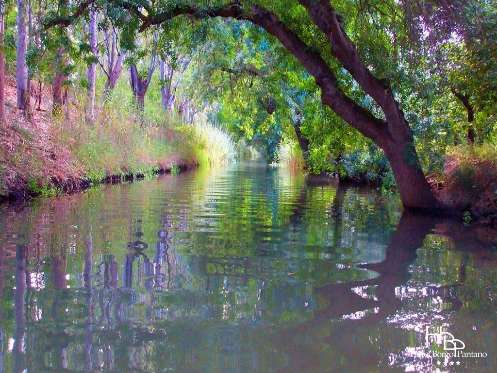 fiume Ciane Siracusa